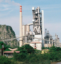 Vietnam Cement Report 2013