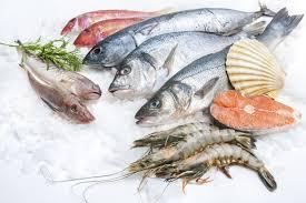 Vietnam Seafood_ Industry Factsheet