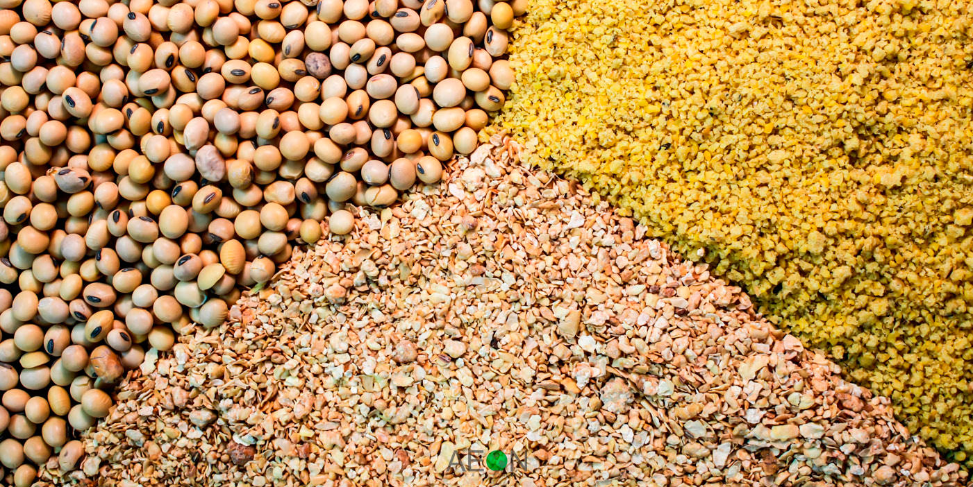 0105006947 - AGRIFEED VIET NAM JOINT STOCK COMPANY